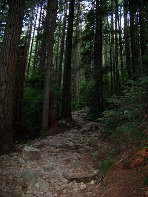 The rocky trail to Lynn Peak in North Vancouver