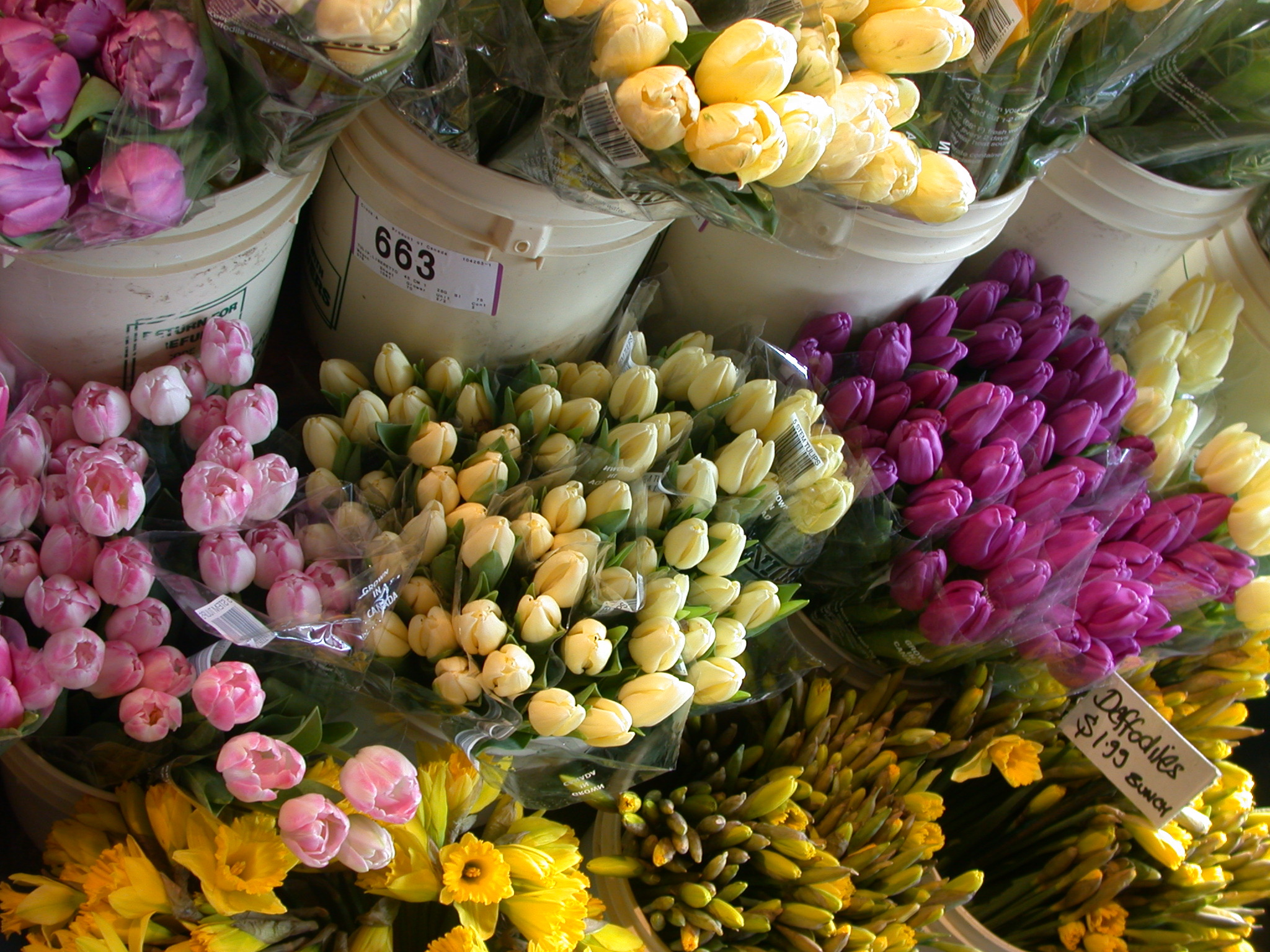 Flower market at Granville Island