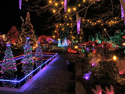 Festival Of Lights At VanDusen Botanical Garden From Sleigh Rides On Grouse Mountain