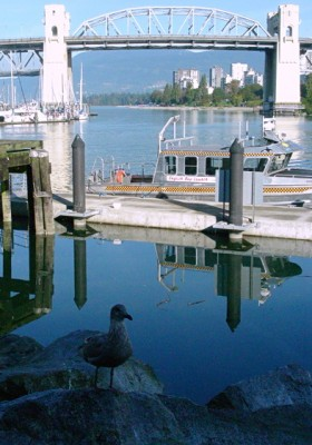 False Creek shoreline. Vancouver BC. Photo by J. Chong