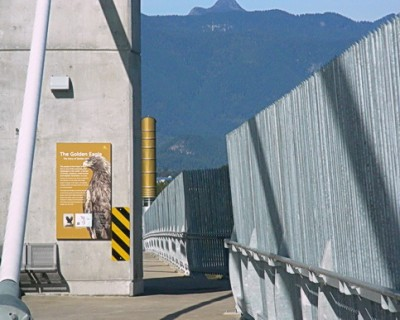 Signs along Golden Ears Bridge for cyclists and pedestrians tell the story of the bridge's name, natural and aboriginal heritage in this part of Metro Vancouver.  Golden Ears Bridge approach from the Langley, BC side. Photo by J. Chong. Fence design mimics Katzie First Nations fish traps and curves embedded into fence, are fish shapes symbolizing 1 million salmon passing through the Fraser River.