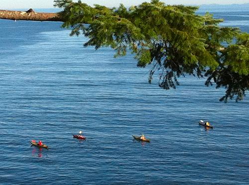 Kayaking out of Sargeant Bay, Halfmoon Bay Sunshine Coast