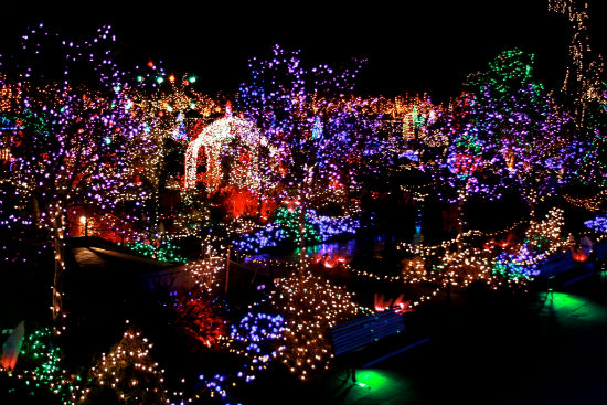 Van Dusen Festival of Lights