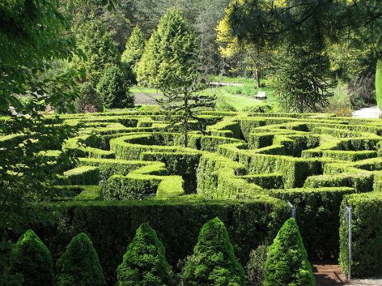 inside garden maze   pixshark     images galleries