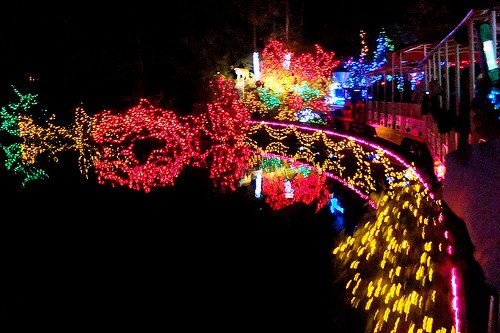 Photo credit: Bright Nights in Stanley Park