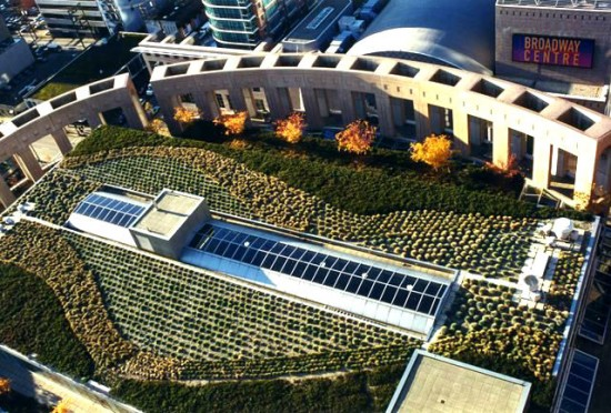 VPL Rooftop Now Photo Credit Greenroofs