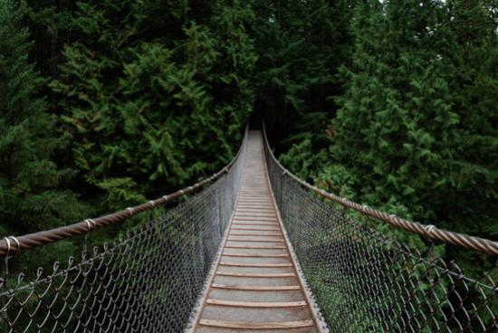 Lynn Canyon Suspension Bridge