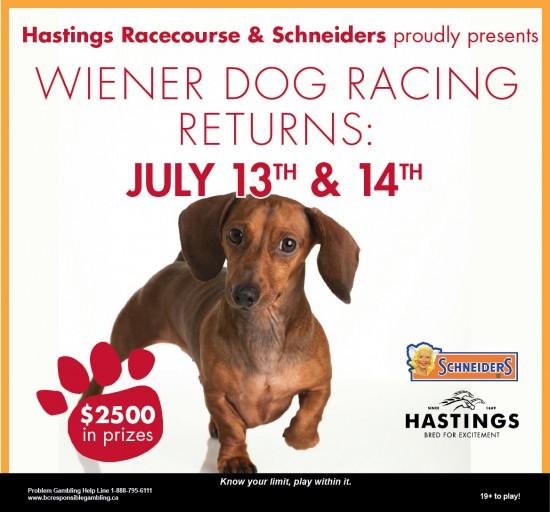 Wiener Dog Racing Vancouver