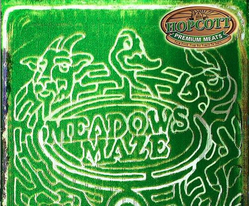 Just a part of the Meadows Maze. See the rest on Facebook
