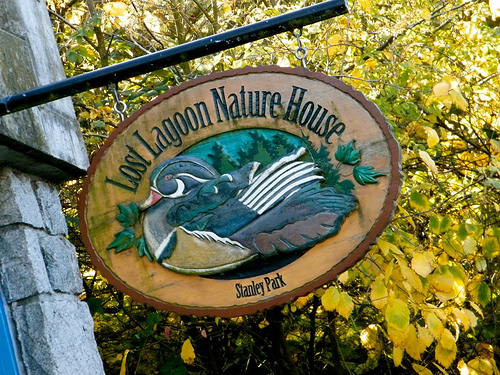 Stanley Park Ecology Society Nature House | Things To Do In Vancouver This Weekend