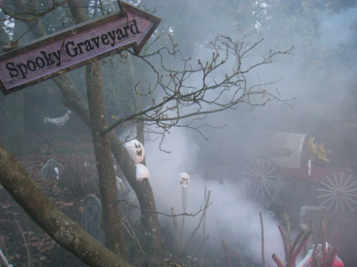Stanley Park Ghost Train | Things To Do In Vancouver This Weekend