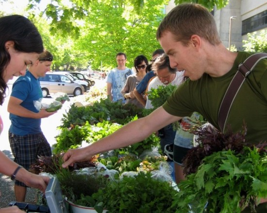 UBC Saturday Public Market | Things To Do In Vancouver This Weekend