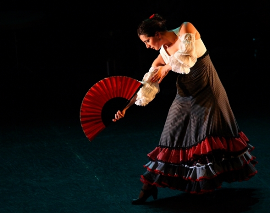 Vancouver International Flamenco Festival | Things To Do In Vancouver This Weekend