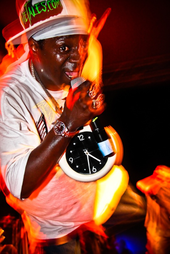 Flavor Flav with Public Enemy at the Garrick Theatre, Winnipeg, May 21 2010. Ailsa Dyson photo.
