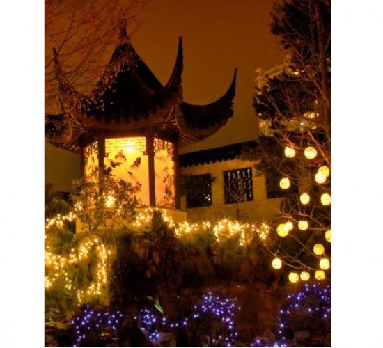 Photo Credit: Dr. Sun Yat-Sen Chinese Garden