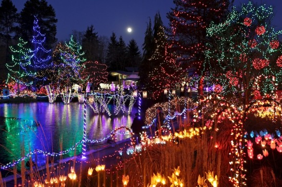 Festival of Lights at VanDusen Botanical Gardens | Vancouver New Year's Eve Top Events