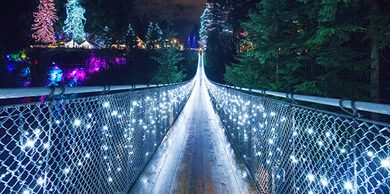 Photo: Capilano Suspension Bridge Park
