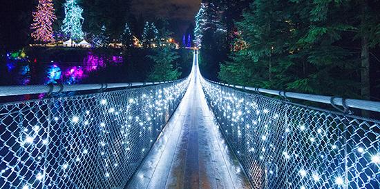 Photo: Capilano Suspension Bridge Park