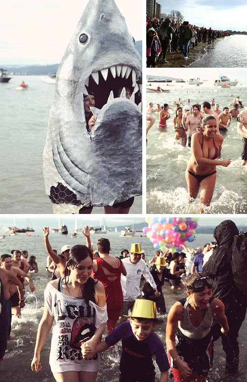 vancouver polar bear swim 2014