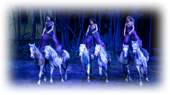 Cavalia  | Things To Do In Vancouver This Weekend