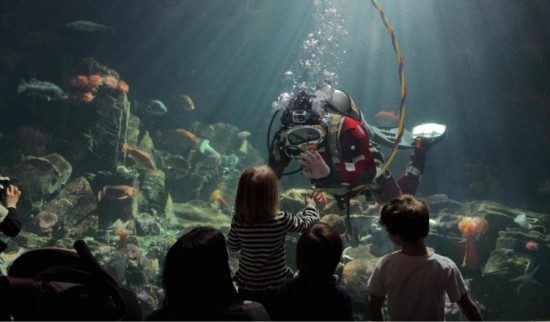 Divers' Weekend | Things To Do In Vancouver This Weekend