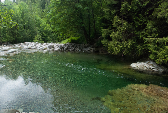30 Foot Pool. Photo Credit: Lynn Canyon