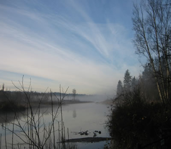 Photo Credit: Burnaby Lake Park Association