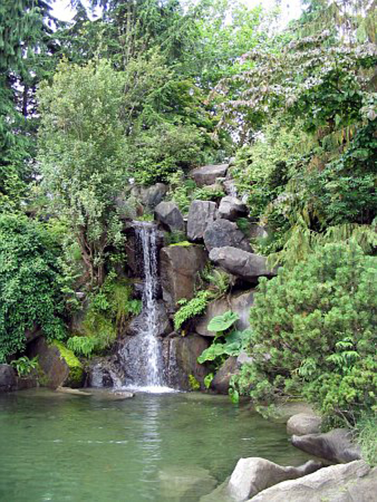 Waterfall in Charleson Park. Photo Credit: Vancouver Park Board