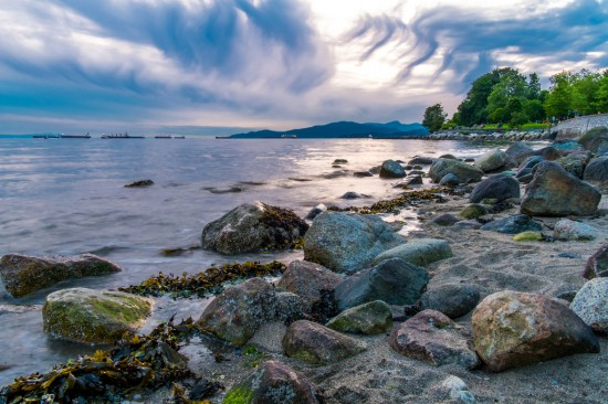Stanley Park shoreline | Things To Do In Vancouver This Weekend