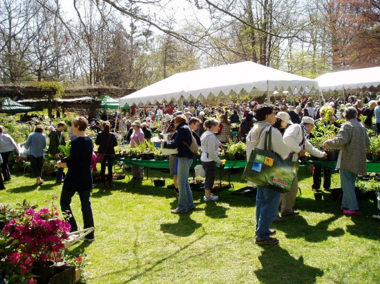VanDusen Botanical Garden Plant Sale | Things To Do In Vancouver This Weekend