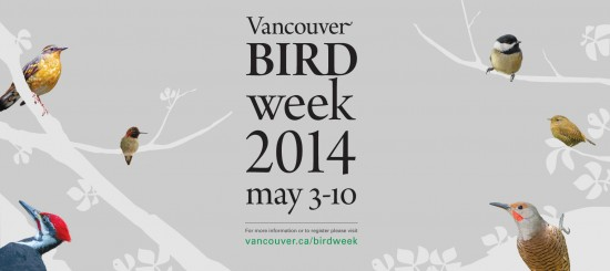 Vancouver Bird Week | Things To Do In Vancouver This Weekend