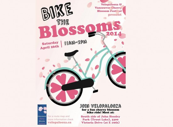 Vancouver Cherry Blossom Festival and Velopalooza - Bike The Blossoms | Things To Do In Vancouver This Weekend