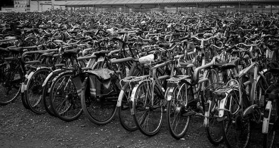 VPD Bike Sale Vancouver 2014