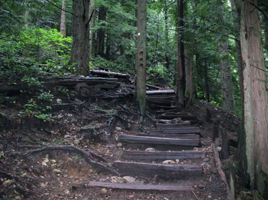 Grouse Grind | Things To Do In Vancouver This Weekend