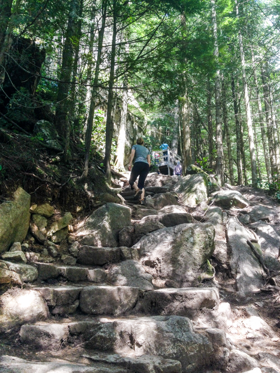 The initial part of the trail follows the same route as the popular hike up The Chief.  Terrain is steep - Expect a good workout.