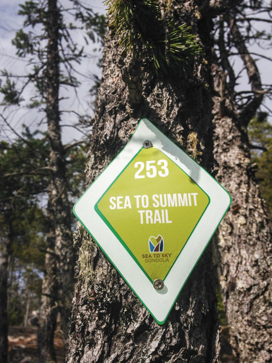 The Sea to Summit Trail is 6 kilometres one-way and takes 3-4 hours.  Elevation gain is 916 metres.
