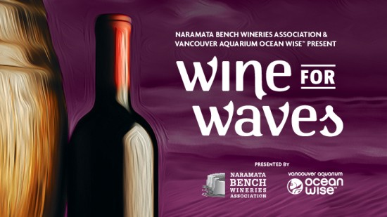Vancouver Aquarium - Wine For Waves | Things To Do In Vancouver This Weekend