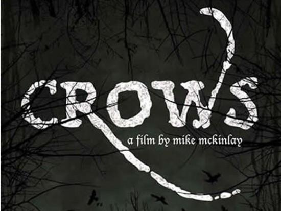 Vancouver Bird Week - Crow Night Film Screening & Talk | Things To Do In Vancouver This Weekend