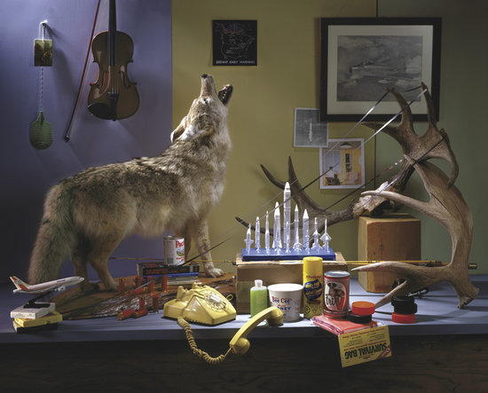 Canada Picture No. 3 (Wolf) - Douglas Coupland. Collection of Kevin Louie