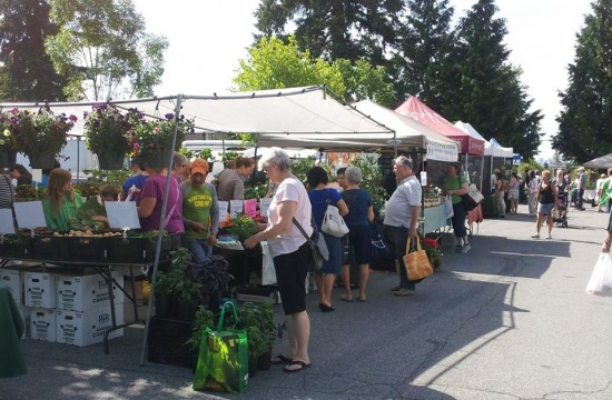 Coquitlam Farmers Market | Things To Do In Vancouver This Weekend