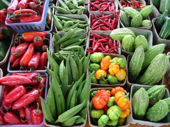 Kitsilano Farmers Market | Things To Do In Vancouver This Weekend