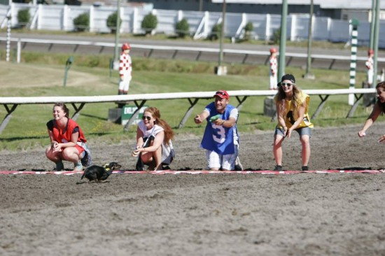 Annual Weiner Dog Races | Things To Do In Vancouver This Weekend