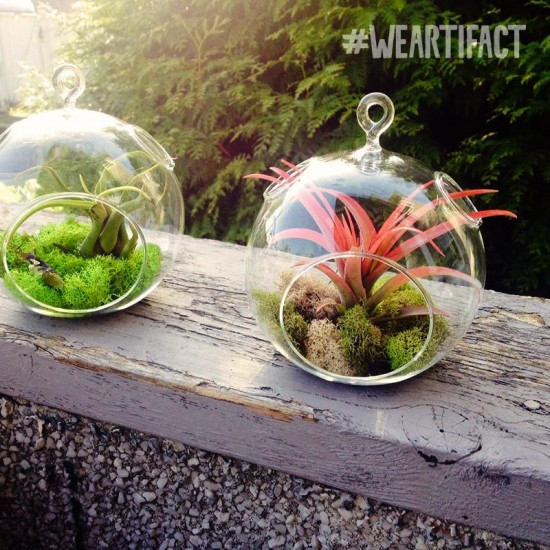 Artifact - West End| Things To Do In Vancouver This Weekend