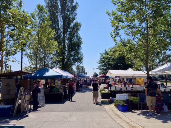 River District Farmers Market | Things To Do In Vancouver This Weekend