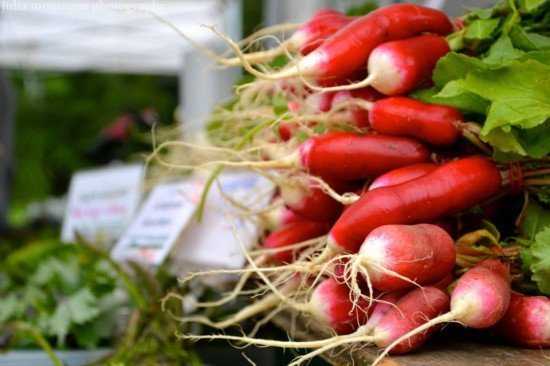 Trout Lake Farmers Market | Things To Do In Vancouver This Weekend