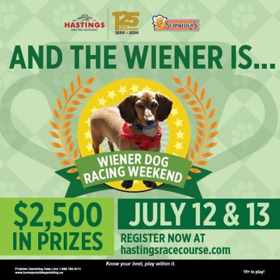 wiener dog racing vancouver 2014