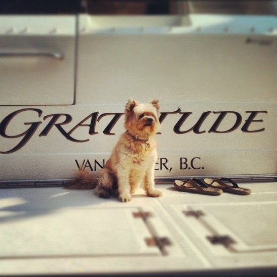 8th Annual Boat Show At The Creek | Things To Do In Vancouver This Weekend