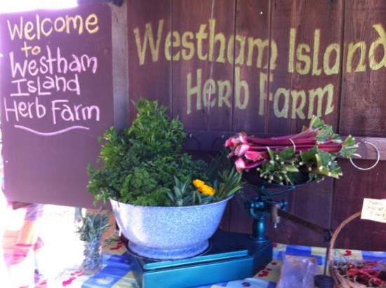 Day At The Farm - Westham Island Herb Farm | Things To Do In Vancouver This Weekend