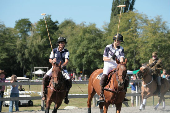 There will be a polo demo at the fair. Photo by Noriko Tidball.