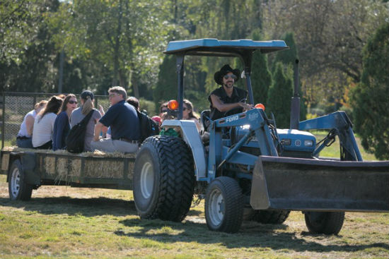 It's not often that city slickers get a chance to take a hay ride. Photo by Noriko Tidball.